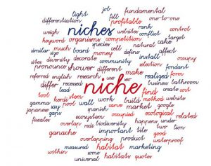 How to Choose a Niche for Affiliate Marketing : cloud