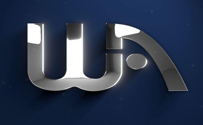 Wealthy Affiliate Logo bling